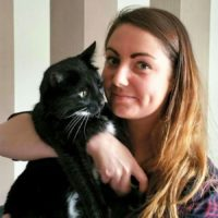 Kitty Angels Premier Cat Sitters Birmingham