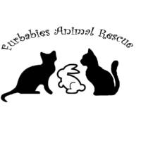 Furbabies Animal Rescue Birmingham