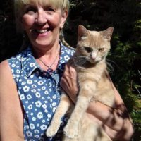 Kitty Angels Cat Sitting Service Solihull -Pauline