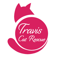 Travis cat Rescue