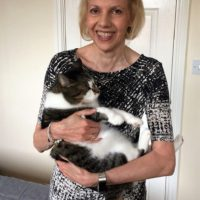 Jean - Cat Sitter Kitty Angels Stourbridge