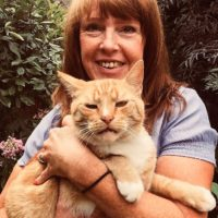 Debra - Cat Sitter Kitty Angels Birmingham