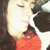 Jennifer - Cat Sitter Kitty Angels Birmingham