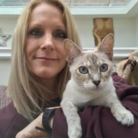 Amber - Cat Sitter Kitty Angels Rugby & Lutterworth