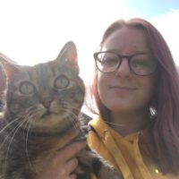 Amber - Cat Sitter Kitty Angels Warwick