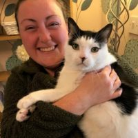 Natalie - Cat Sitter Kitty Angels Sutton Coldfield
