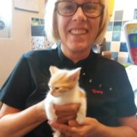 Tracy - Cat Sitter Kitty Angels Solihull